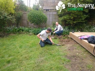 Tree Surgery London - Gardeners Garten & Crafts 2