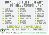 Medical Cannabis The Best Cure For Most Illness